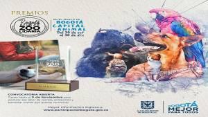 Premios Ciudad Zoolidaria 2018 - FOTO: Pieza gráfica IDPAC