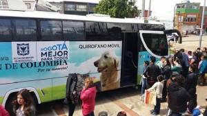 Perros y gatos agradecen operativos del Distrito contra el maltrato en el sur de Bogotá. Foto: Protección Animal