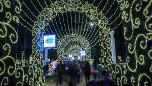 Recomendaciones de Navidad - Foto: Consejería de Comunicaciones