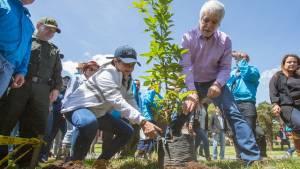 Siembra de árboles en Bogotá - FOTO: Prensa Personería de Bogotá