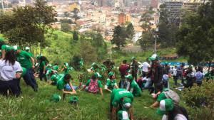 Los cerros orientales se vistieron de verde con 5.000 nuevos árboles. Foto: Fundación Más Verde Más Vida.