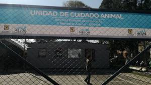 Cuidado Animal. Foto: Instituto de Protección Animal