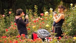 Fueron 8.600 las personas que visitaron el fin de semana pasado el Jardín Botánico de Bogotá.