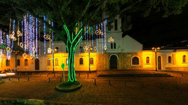 Iluminación Navideña - Foto: IDRD