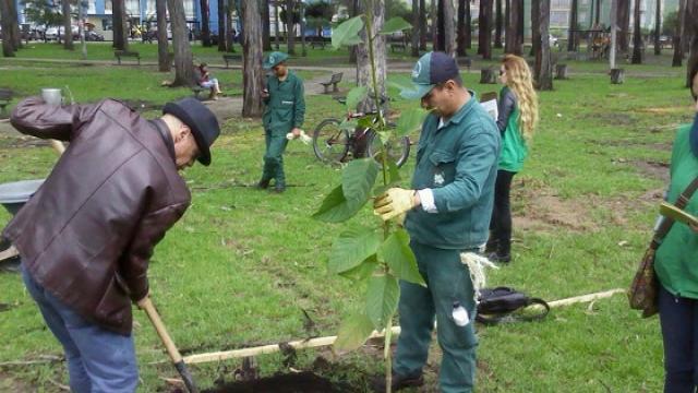 El Jardín Botánico asesora a los ciudadanos que quieran sembrar árboles.