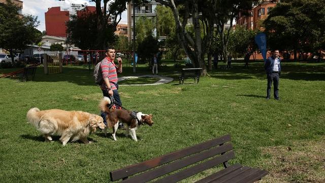 Consulta Mascotas Bogotá Abierta - FOTO: Consejería de Comunicaciones.