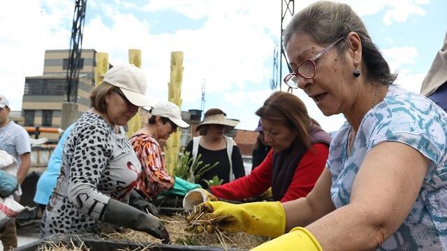 Jóvenes enseñan agricultura uirbana - FOTO: Prensa IDPAC