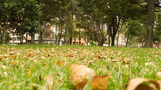 Parque El Virrey - Foto: Andrés Sandoval
