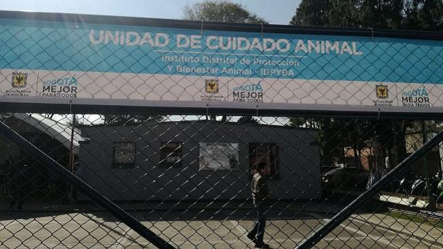 Cuidado Animal. Foto: Instituto de Protección Animal