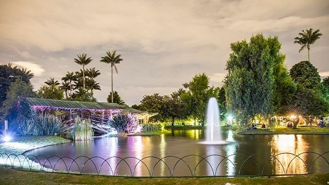 Foto: Jardín Botánico