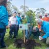 Alcalde Enrique Peñalosa en una 'Megaplantatón'