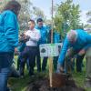 Alcalde Peñalosa dio inicio a la 'Megaplantatón' en Bogotá - Foto: Alcaldía de Bogotá